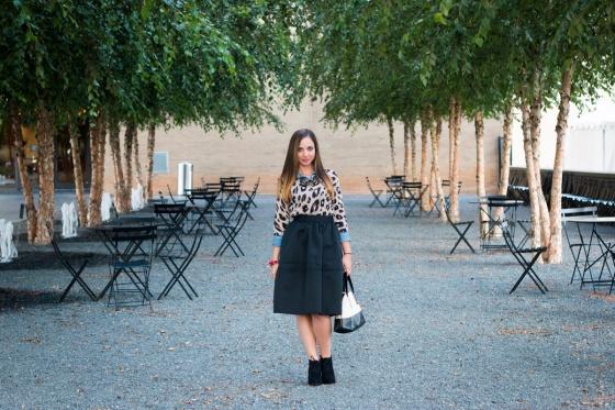 Skirt - 1